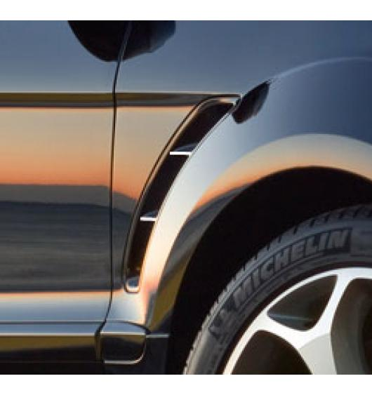 Chrome moulding trim for vents Ford S-Max