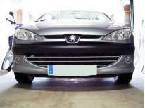 Radiator grill chrome moulding trim Peugeot 206 Peugeot 206 CC Peugeot 206 SW honeycomb