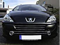 Baguette de calandre chromée Peugeot 307 0518 307 CC 0518 307 SW 0518