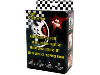 Painting kit for brake calipers