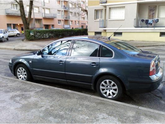 Side windows chrome trim VW Passat 9505