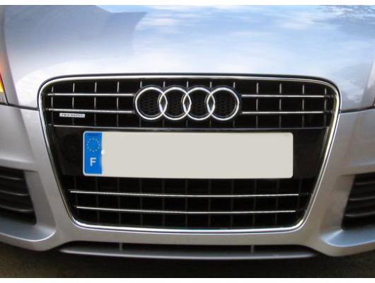 Chromleiste für Kühlergrill Audi TT Série 2 0614 Audi TT RS Audi TTS