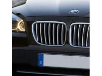 Radiator grill chrome moulding trim BMW X1