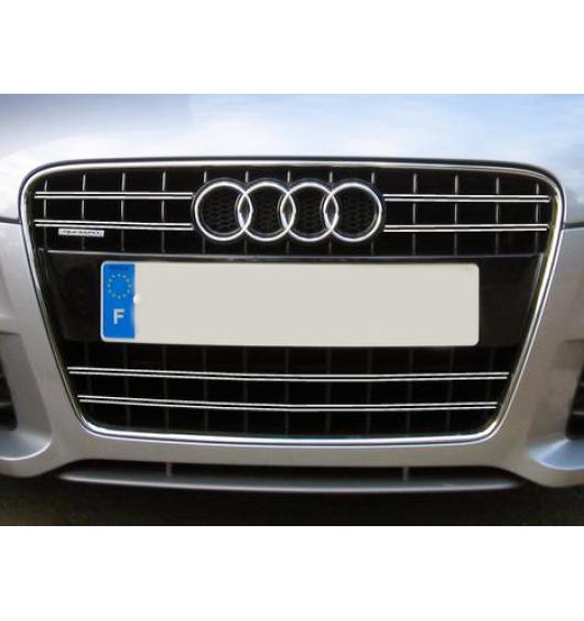 Radiator grill dual chrome trim Audi TT Série 2 06-14 Audi TT RS Audi TTS