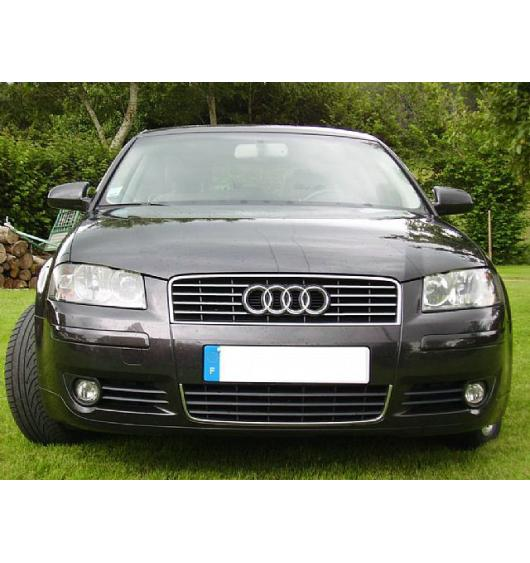 Upper radiator grill chrome trim Audi A4 série 1 94-98/série 2 00-04 RS4 00-01 S4...