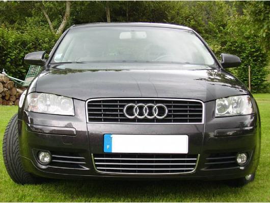 ZierChromleiste für KühlergrillUnterteil Audi A4 série 1 9498série 2 0004 RS4 0001 S4